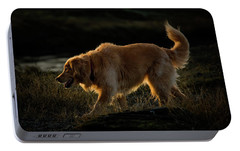 Portable Battery Charger featuring the photograph Golden by Randy Hall