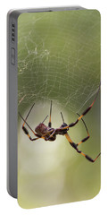 Golden-silk Spider Portable Battery Charger
