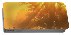 Portable Battery Charger featuring the photograph Golden Sunlight Blessings by Rachel Cohen