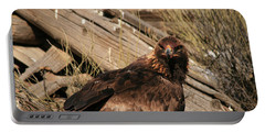 Goldeneagle1 Portable Battery Charger