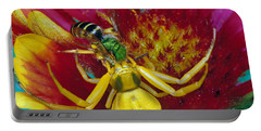 Goldenrod Crab Spider Misumena Vatia Portable Battery Charger by Panoramic Images
