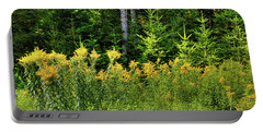 Portable Battery Charger featuring the photograph Goldenrod In The Adirondacks by David Patterson