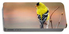 Goldfinch At Sunrise Portable Battery Charger by Susan Capuano