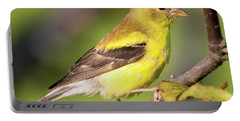 Goldfinch In The Early Morning  Portable Battery Charger
