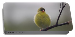 Portable Battery Charger featuring the photograph Goldfinch Puffball by Susan Capuano