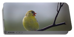 Portable Battery Charger featuring the photograph Goldfinch Song by Susan Capuano