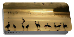 Portable Battery Charger featuring the photograph Good Morning Chula Lake by Arik Baltinester