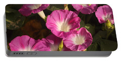 Portable Battery Charger featuring the photograph Good Morning, Glory by Sheila Brown