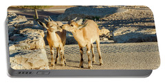 Portable Battery Charger featuring the photograph Good Morning Kiss by Arik Baltinester