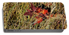 Gooseberry In Fall Portable Battery Charger