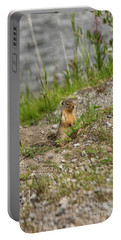 Gopher In Close Up Portable Battery Charger by Patricia Hofmeester