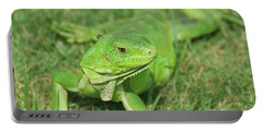 Gorgeous Green Iguana Stretched Out Portable Battery Charger