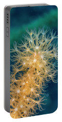 Gorgonian Detail Portable Battery Charger