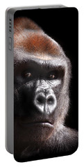 Gorilla ... Kouillou Portable Battery Charger