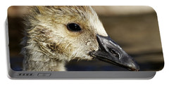 Portable Battery Charger featuring the photograph Gosling - Growing Up by Sue Harper