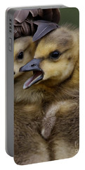Portable Battery Charger featuring the photograph Gosling - Make Room by Sue Harper