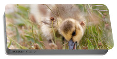 Gosling Nibble Portable Battery Charger