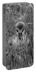 Portable Battery Charger featuring the photograph Gosling Serenity by Sue Harper