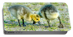 Portable Battery Charger featuring the photograph Goslings Snacking by Steven Santamour