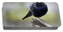 Grackle Resting Portable Battery Charger