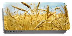 Grain Field Portable Battery Charger