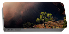 Portable Battery Charger featuring the photograph Grand Canyon Juniper by John Hight