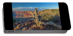 Portable Battery Charger featuring the photograph Grand Canyon Old Tree by Steven Sparks
