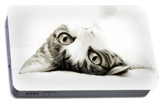 Portable Battery Charger featuring the photograph Grand Kitty Cuteness Bw by Andee Design
