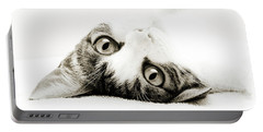 Grand Kitty Cuteness Bw Portable Battery Charger by Andee Design