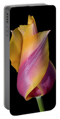 Grand Opening - Purple And Yellow Tulip 001 Portable Battery Charger
