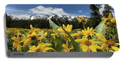 Grand Teton Mountains Portable Battery Charger