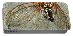 Grand Western Cicada Portable Battery Charger
