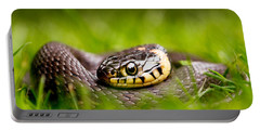 Grass Snake - Natrix Natrix Portable Battery Charger