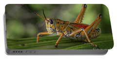 Grasshopper And Palm Frond Portable Battery Charger