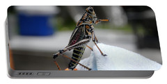 Dancing Grasshopper At The Pool Portable Battery Charger