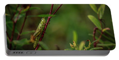 Grasshopper Holding On Portable Battery Charger by Ray Congrove