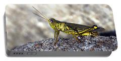 Grasshopper Portable Battery Charger by Joseph Skompski