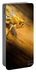 Grasshopper Under Shining Yellow Light Portable Battery Charger