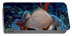 Gray Angel Fish And Sponge Portable Battery Charger