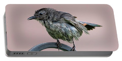 Gray Catbird After The Rain Portable Battery Charger