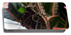 Gray Cracker Butterfly Portable Battery Charger