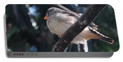 Gray Crowned Rosy Finch   Portable Battery Charger by Haleh Mahbod
