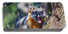 Gray Fox Awakens In The Tree Portable Battery Charger