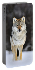 Gray Wolf In The Snow Portable Battery Charger