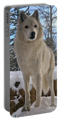 Gray Wolf Winter Intensity Portable Battery Charger