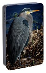 Portable Battery Charger featuring the photograph Great Blue Heron 2 by Randy Hall