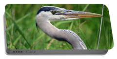 Great Blue Heron Close-up Portable Battery Charger