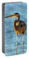 Great Blue Heron Closeup Portable Battery Charger