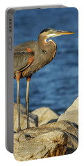 Great Blue Heron On Rock Portable Battery Charger