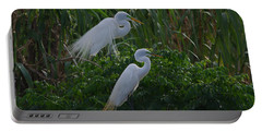 Great Egret Displays Windy Mating Plumage 2 Portable Battery Charger